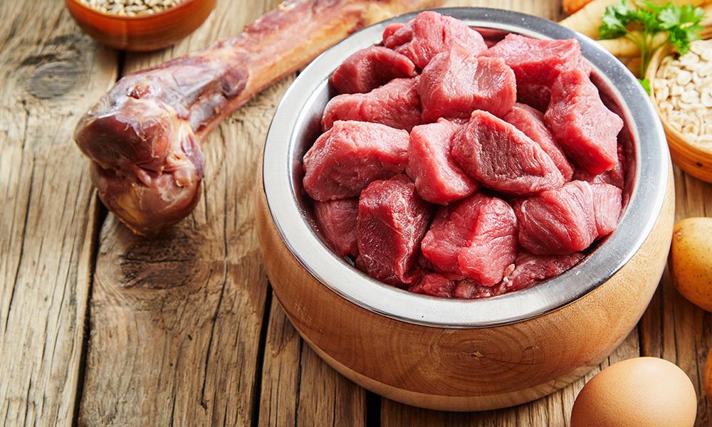 狗狗補鈣好重要?3點極速了解鈣質與毛孩的關係!鮮食/狗糧/豬肉/牛肉/骨頭