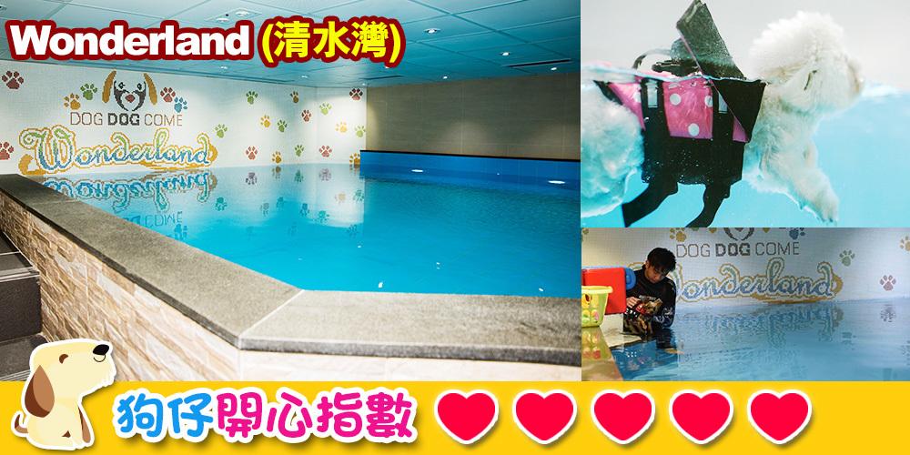 狗游泳池 | Wonderland