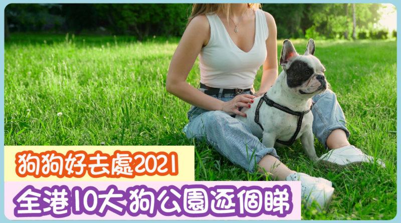 狗狗好去處2021|全港10大狗公園逐個睇